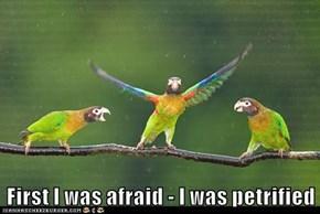 First I was afraid - I was petrified