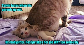 Calvin hates when his  parents go out.               His babysitter, Roslyn takes her job WAY too seriously.