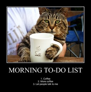 MORNING TO-DO LIST