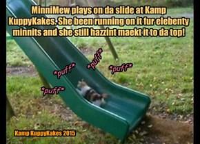 Da playgrownd at Kamp KuppyKakes is gud eksersizes fur da kits!