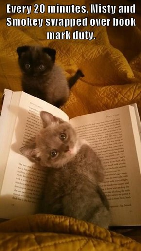 Every 20 minutes, Misty and Smokey swapped over book mark duty.