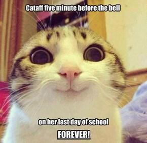 Happy Retirement, Cataff!
