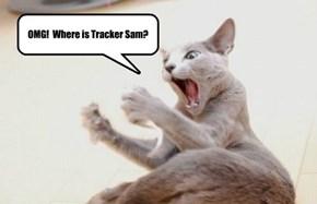 OMG!  Where is Tracker Sam?