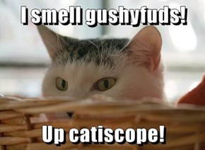 I smell gushyfuds!  Up catiscope!