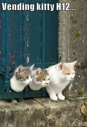 Vending kitty H12...