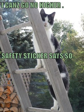 I CANZ GO NO HIGHER . SAFETY STICKER SAYS SO.