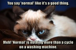 You say 'normal' like it's a good thing.  Meh! 'Normal' is nothing more than a cycle on a washing machine.