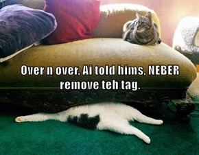 Over n over, Ai told hims, NEBER remove teh tag.