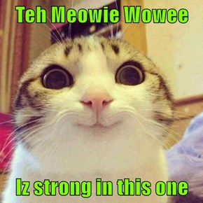 Teh Meowie Wowee  Iz strong in this one