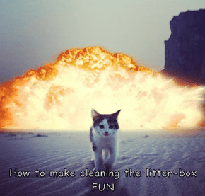 How to make cleaning the litter-box FUN