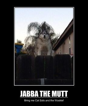 JABBA THE MUTT