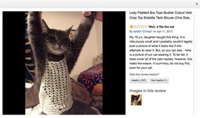 This Mom Had a Most Excellent Amazon Review for a Skimpy Girl's Top