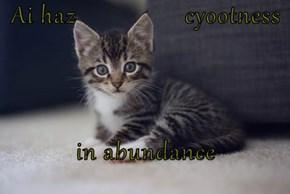 Ai haz                 cyootness  in abundance