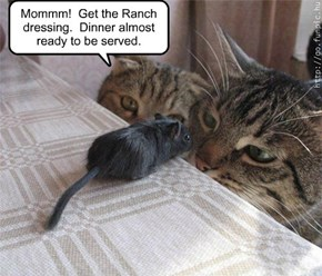 Mommm!  Get the Ranch  dressing.  Dinner almost  ready to be served.