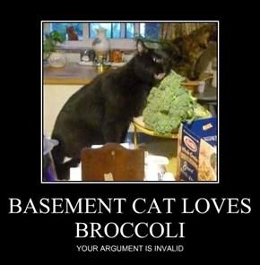 BASEMENT CAT LOVES BROCCOLI
