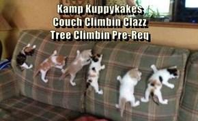Kamp Kuppykakes                                              Couch Climbin Clazz                                          Tree Climbin Pre-Req