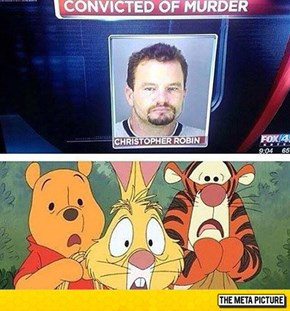 Devastation For The Hundred Acre Woods