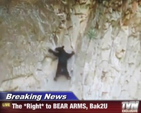 Breaking News - The *Right* to BEAR ARMS, Bak2U