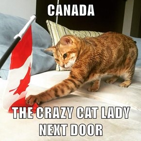 CANADA  THE CRAZY CAT LADY NEXT DOOR