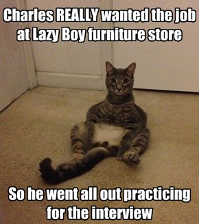 Charles REALLY wanted the job at Lazy Boy furniture store