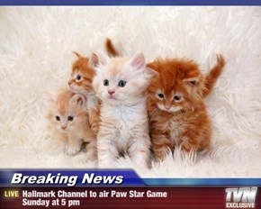 Breaking News - Hallmark Channel to air Paw Star Game  Sunday at 5 pm