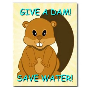 GIVE A DAM!