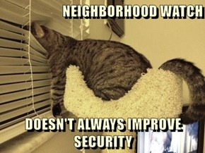 NEIGHBORHOOD WATCH  DOESN'T ALWAYS IMPROVE SECURITY