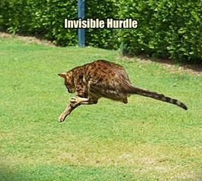 Invisible Hurdle
