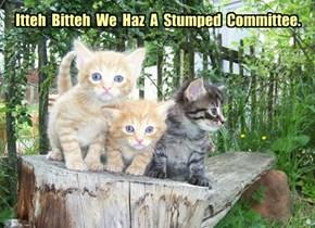 Itteh  Bitteh  We  Haz  A  Stumped  Committee.