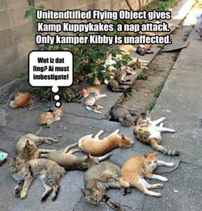 UFO over Kamp Kuppykakes