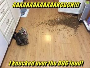 AAAAAAAAAAAAARGGGH!!!  I knocked over the DOG food!