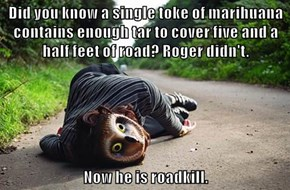 Did you know a single toke of marihuana contains enough tar to cover five and a half feet of road? Roger didn't.  Now he is roadkill.
