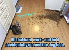 All that hard work - and he'd accidentally opened the dog food.