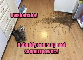 Nobuddy can stop kittie!