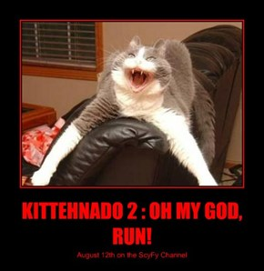 KITTEHNADO 2 : OH MY GOD, RUN!