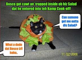 KAMP 2105: In teh Kamp Cook-off, Bosco enters teh competishun..