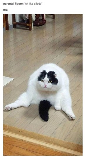 I Am Graceful and Poised