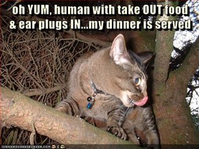oh YUM, human with take OUT food                     & ear plugs IN...my dinner is served