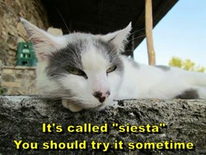 "It's called ""siesta""                            You should try it sometime"
