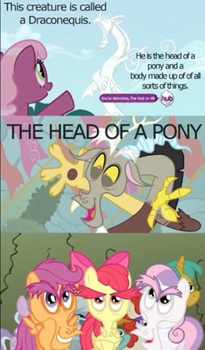 What a Terrifying Pony
