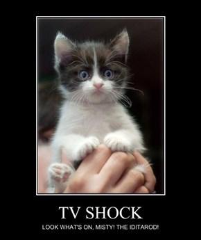 TV SHOCK