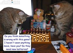 Do you think something  is wrong with this game?  I haven't seen anything move, have you? Do they need new batteries?