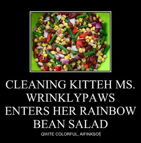 CLEANING KITTEH MS. WRINKLYPAWS ENTERS HER RAINBOW BEAN SALAD