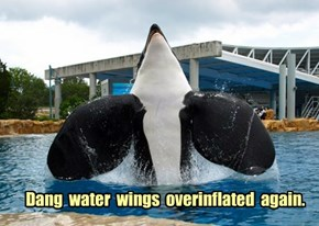 Dang  water  wings  overinflated  again.