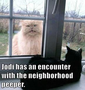 Jodi has an encounter with the neighborhood peeper.