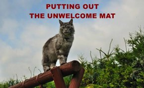 PUTTING OUT                                         THE UNWELCOME MAT