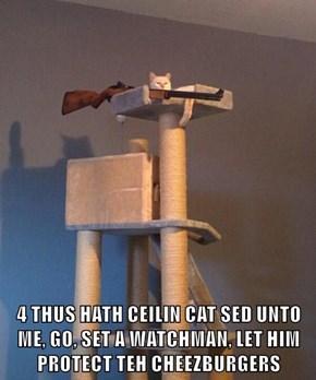 4 THUS HATH CEILIN CAT SED UNTO ME, GO, SET A WATCHMAN, LET HIM PROTECT TEH CHEEZBURGERS