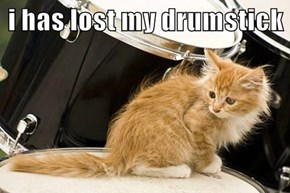 i has lost my drumstick