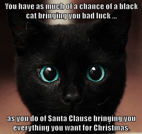 You have as much of a chance of a black cat bringing you bad luck ...  as you do of Santa Clause bringing you everything you want for Christmas.