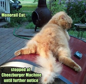 Monorail Cat:                       stopped at  Cheezburger Machine     until further notice
